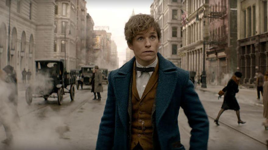 J.K. Rowling planea cuatro películas más de 'Animales fantásticos...'