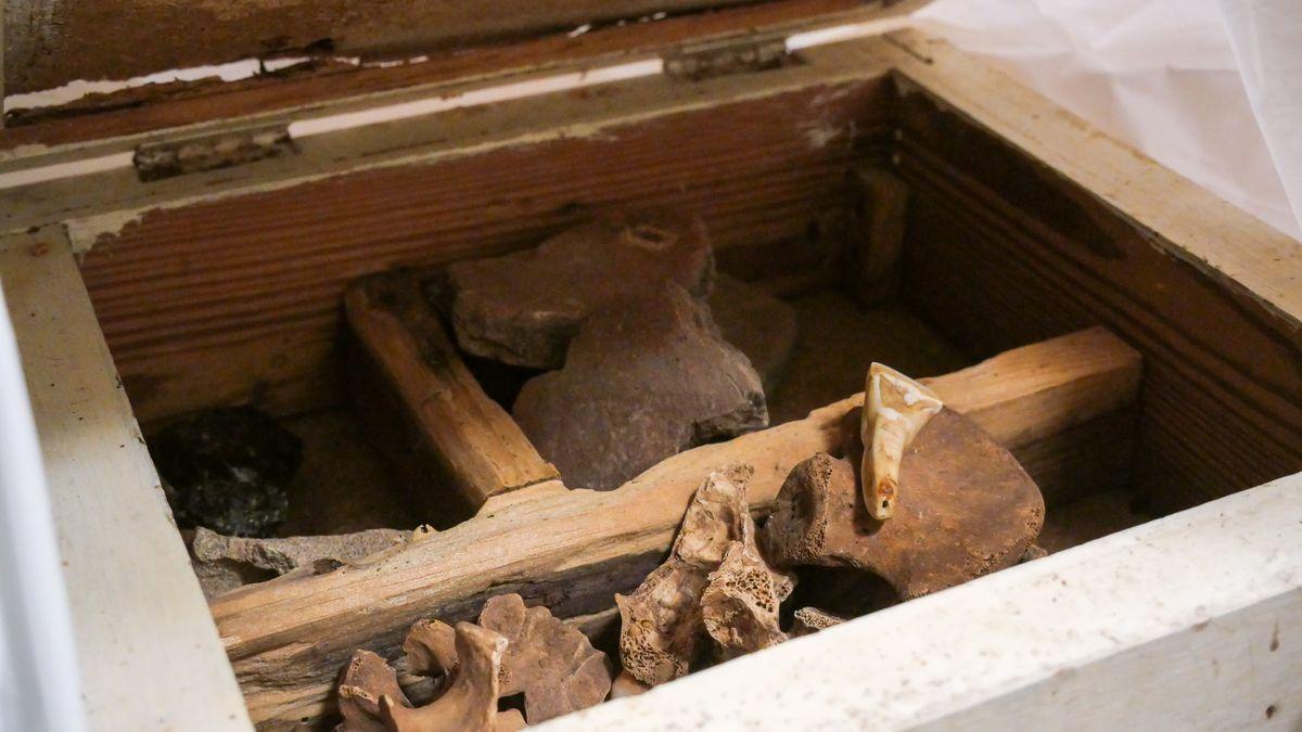 Una de las cajas encontradas con piezas arqueológicas.