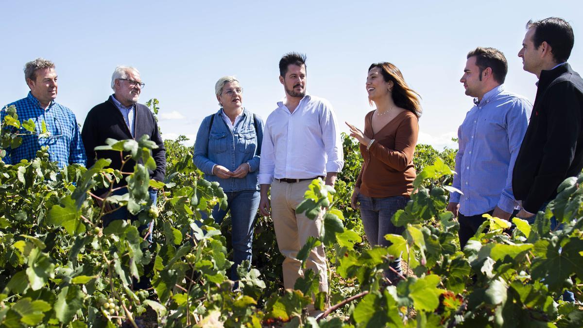 Los elaboradores de cava de Requena posan en un viñedo de la localidad.