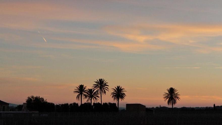 Die Nächte auf Mallorca werden noch heißer - Tiefstwerte: 29 Grad
