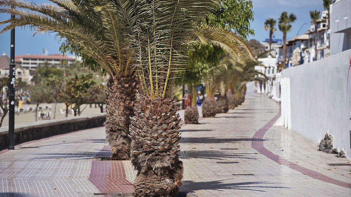 Paseo marítimo de Los Cristianos a la altura de la playa de Las Vistas.