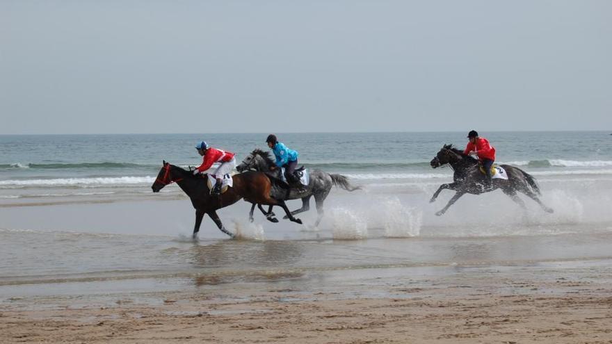 Los caballos vuelven a pisar mañana la arena de Santa Marina
