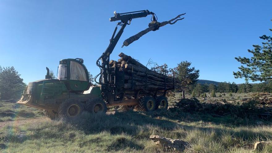 Los empresarios de la biomasa piden acogerse al plan 'Resistir'