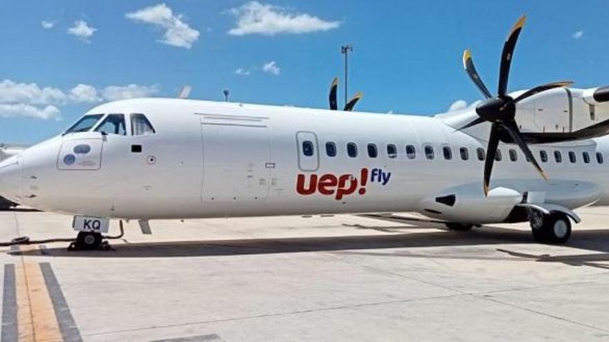 Las mascotas viajarán gratis entre Ibiza y el resto de islas