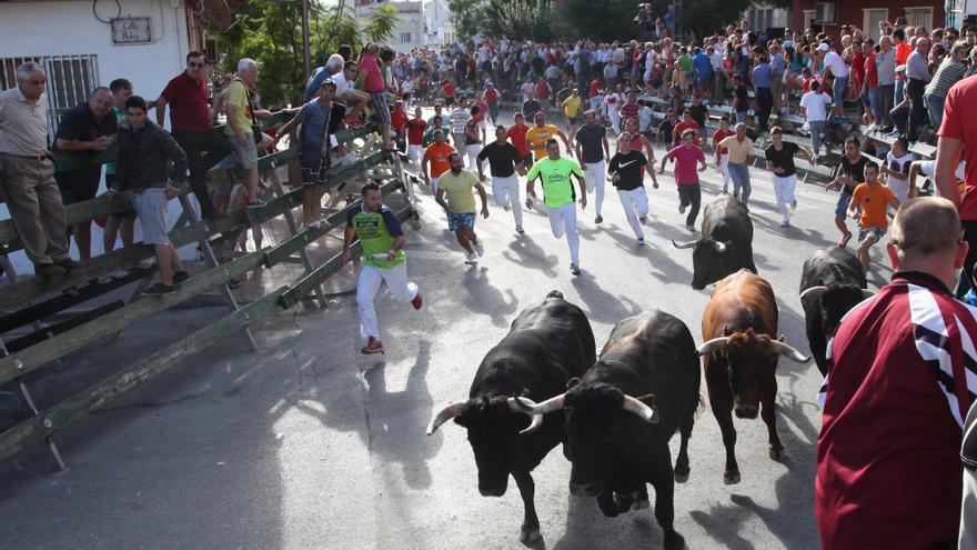 Fiestas de Calasparra: Los encierros viven las fiestas desde la barrera