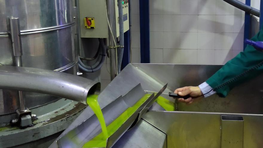 Japón reconoce la calidad de once aceites producidos por empresas de la comarca de Priego