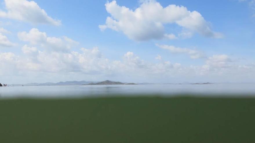 """Pacto por el Mar Menor advierte: """"La laguna vuelve a oscurecerse"""""""