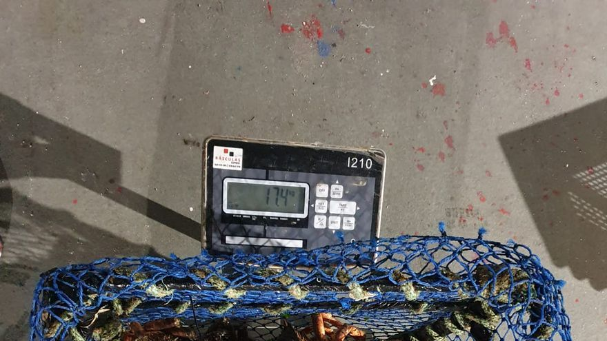 Vigilantes de A Illa persiguen a dos furtivos sorprendidos mientras extraían centolla