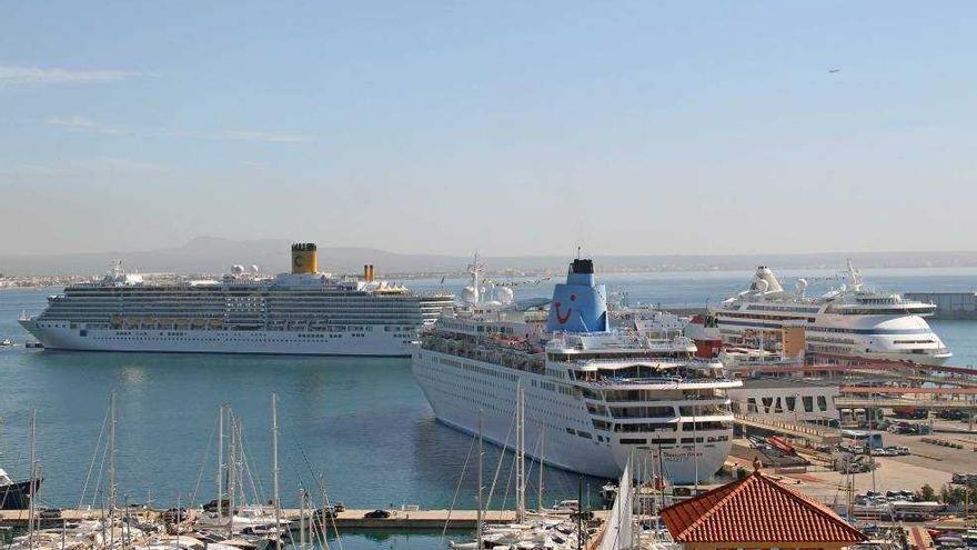 Pimeco pide a la Autoridad Portuaria y a Salud reanudar las escalas de cruceros