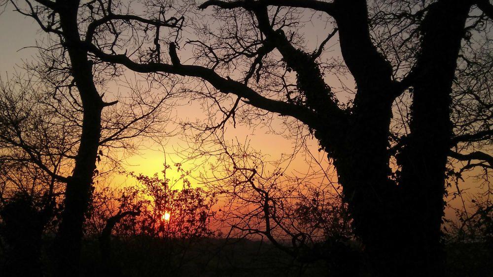 Crepuscle. Aquesta fotografia enviada per un lector ens ensenya la posta de sol del primer dia de primavera, on podem veure un cel rogent que ens deixa un degradat de colors ben càlids per acabar el dia.