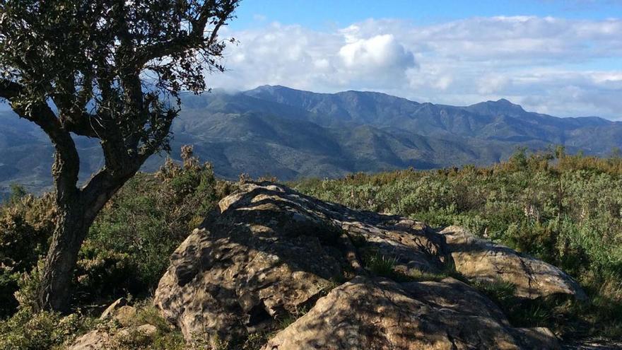Pau es compromet amb la Carta Europea del Turisme Sostenible