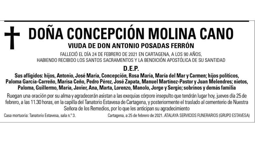 Dª Concepción Molina Cano