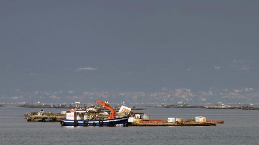 La subida de las tasas a las industrias del litoral preocupa a Mexillón de Galicia