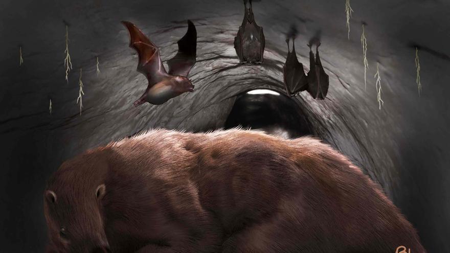 Hallan el fósil de un verdadero vampiro gigante de 100 mil años en Argentina