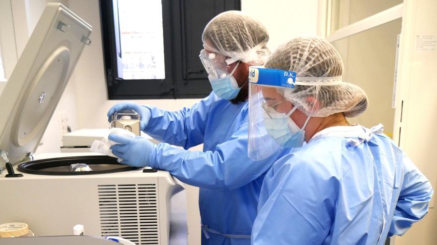 L'assaig clínic de la vacuna pròpia d'HIPRA començarà a mitjans d'agost