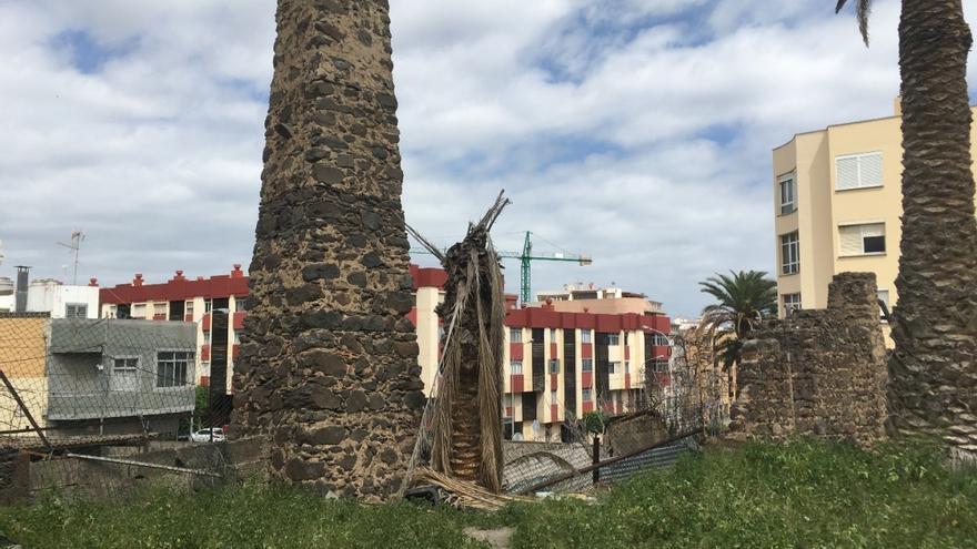 Nueva intervención arqueológica en el ingenio azucarero de Los Picachos