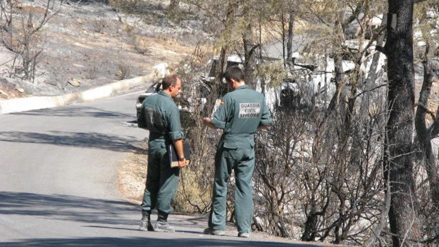 La Guardia Civil analiza un posible maltrato a un perro en un domicilio de Llucmajor