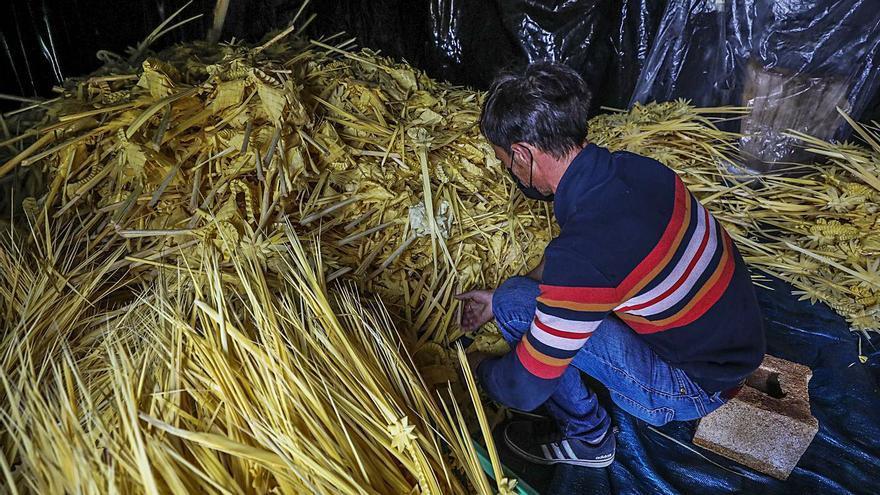 Los artesanos de la palma se encomiendan a sobrevivir con pedidos para misas y balcones