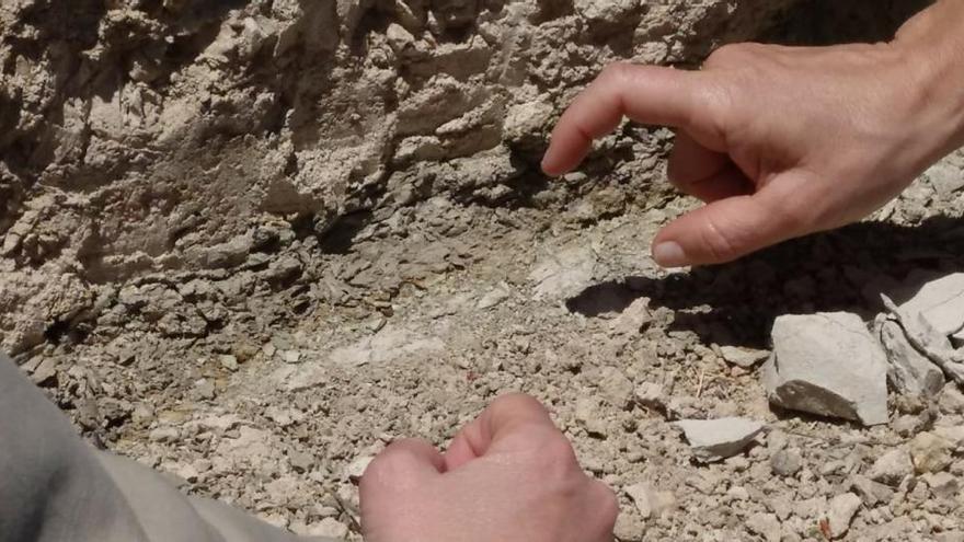 El Consell declara monumento natural el límite geológico K/T de la Capa Negra de Agost