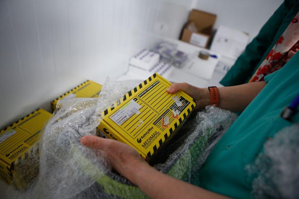 Los viales en las fundas de corcho se introducen en cajas de transporte