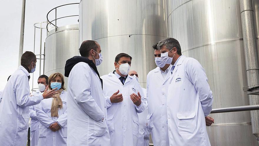 Capsa invierte 4,5 millones en su fábrica de Granda para ampliar los almacenes