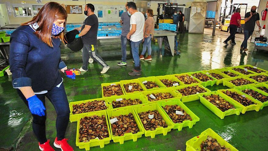 La Xunta centra en saneamiento y puertos sus inversiones en O Salnés para el próximo año