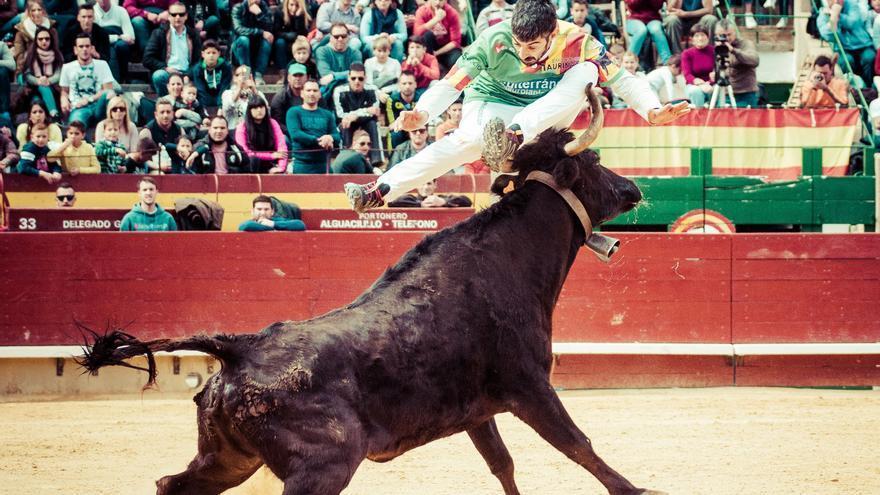 20 expertos  recortadores toman el coso de Castelló