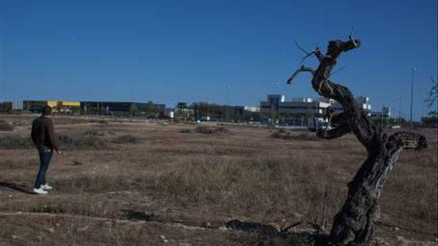 El proyecto Entre zonas verdes y jardines inundables