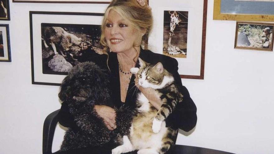 Brigitte Bardot, prisionera de su físico