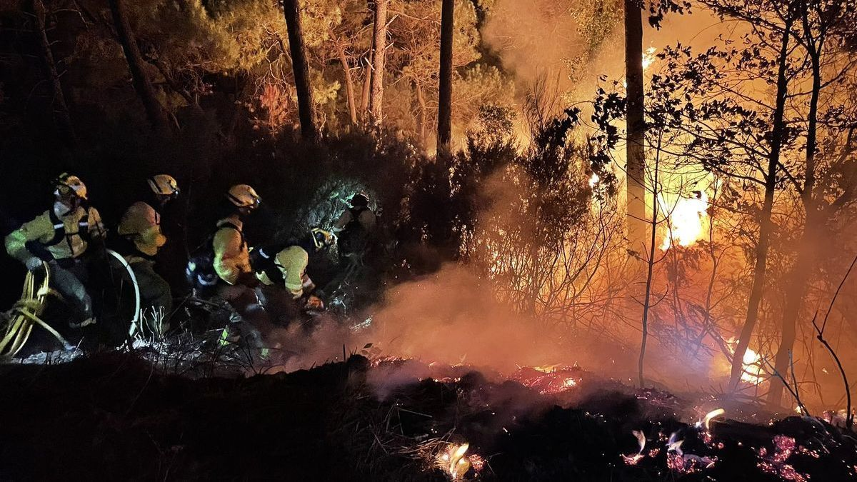 Bomberos forestales atacan directamente un incendio.