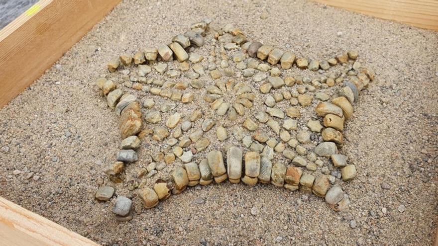 Troben a la Tossa de Montbui el fòssil d'una estrella de mar de fa 48 milions d'anys, una peça única al país