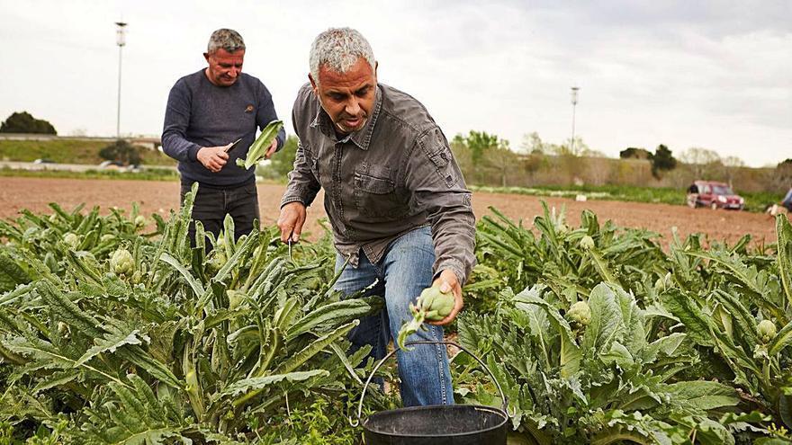 La Fundación «la Caixa» destina  más de 75.000 € a tres proyectos valencianos de transformación rural
