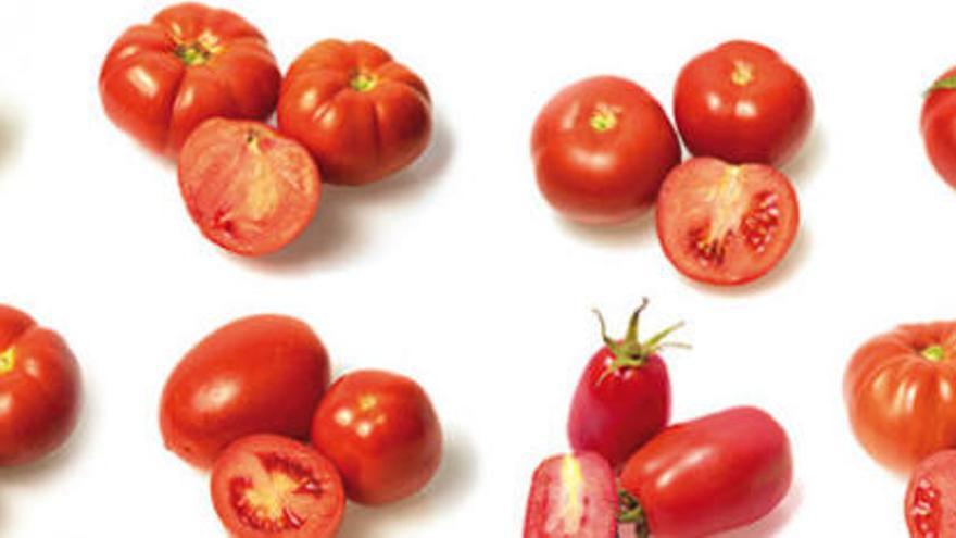 ¿Conoces las variedades tradicionales de tomates canarios?