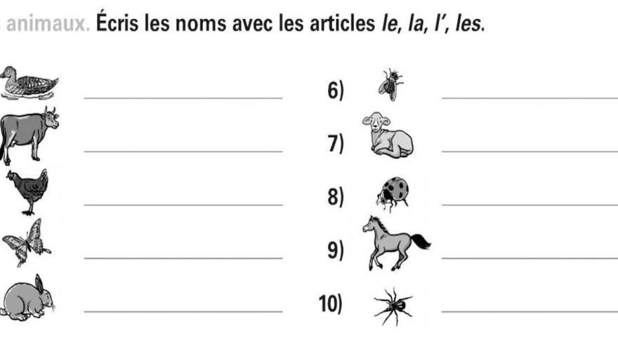 Segona activitat del concurs 'Amuse-toi en Français'