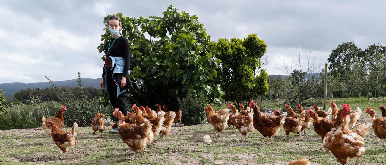 Eva García, con sus gallinas, en su granja de La Braña (Castrillón).
