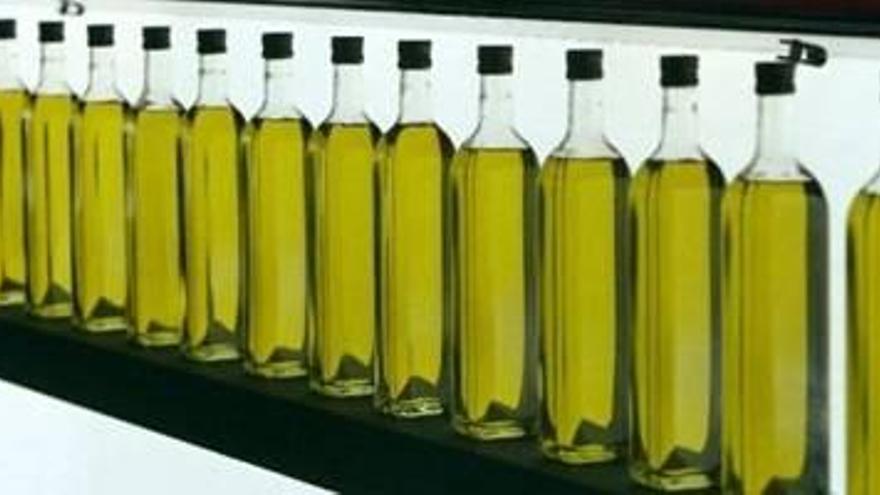 Córdoba vende el 97% de su producción de aceite de oliva de la campaña 2017-18