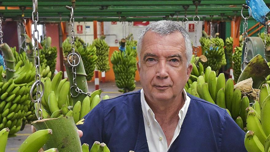 """Ricardo Díaz: """"Queremos vender en Europa plátanos ecológicos de alta calidad"""""""