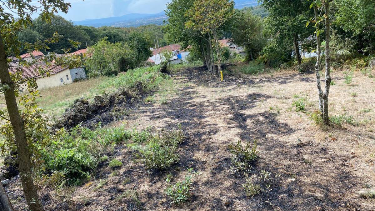 Zona quemada en Borrán, Vilar de Barrio, donde unos vecinos sorprendieron a una mujer plantando fuego.