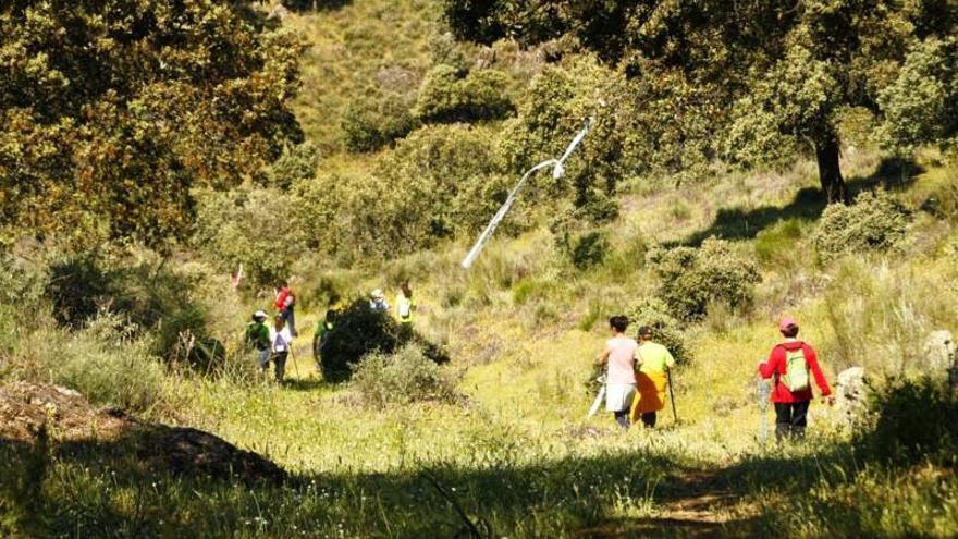 Coria elabora un plan de acciones para la dehesa Mínguez