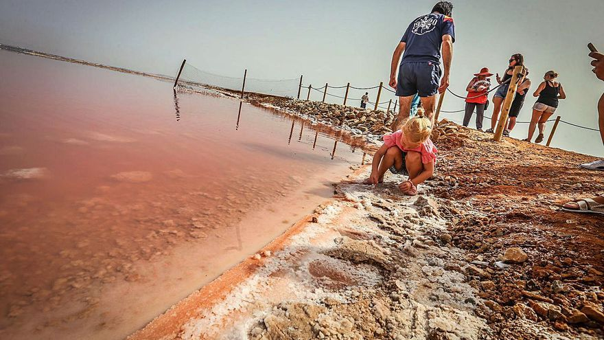 La Complutense estudia los beneficios de las salmueras de la laguna rosa de Torrevieja