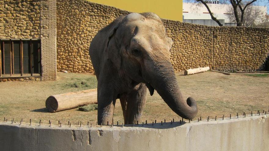 """Ecologistas en Acción pide """"la deconstrucción sostenida"""" del Zoológico"""