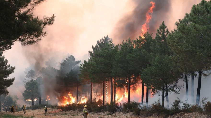Un fuego descontrolado arde en la Sierra de Francia