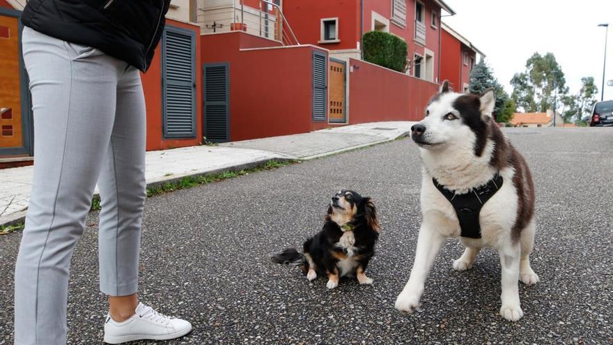 Asalto a una vivienda en Vigo: qué se sabe hasta ahora