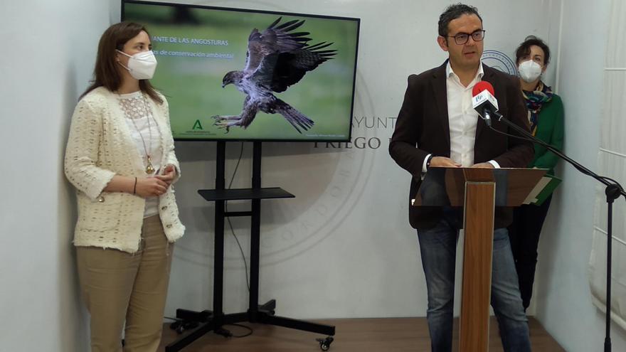 La Junta protegerá el área de nidificación del águila perdicera durante la obra de Las Angosturas en Priego