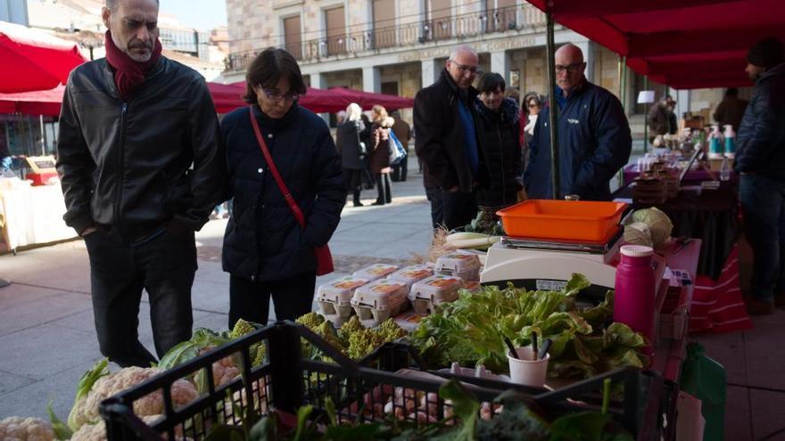 El mercado ecológico regresa el sábado a la plaza de la Constitución