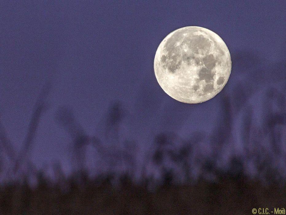 Bonica imatge de la lluna en primer pla a Moià.