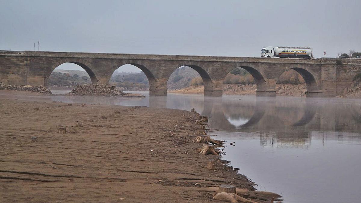 Aparecen muertos mejillones de río en el Tera por el descenso de Agavanzal