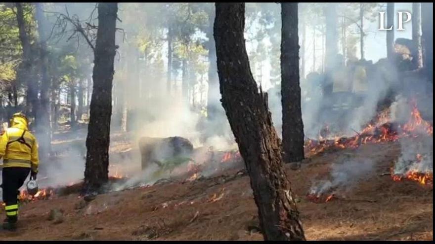El Cabildo prosigue con la prevención de incendios con descargas y la primera quema prescrita del año