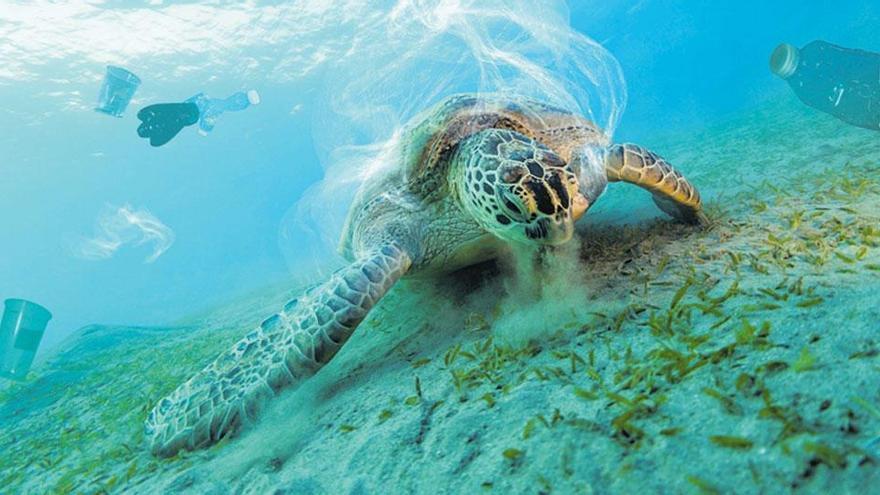 Objetivo: salvar el océano con su propia energía