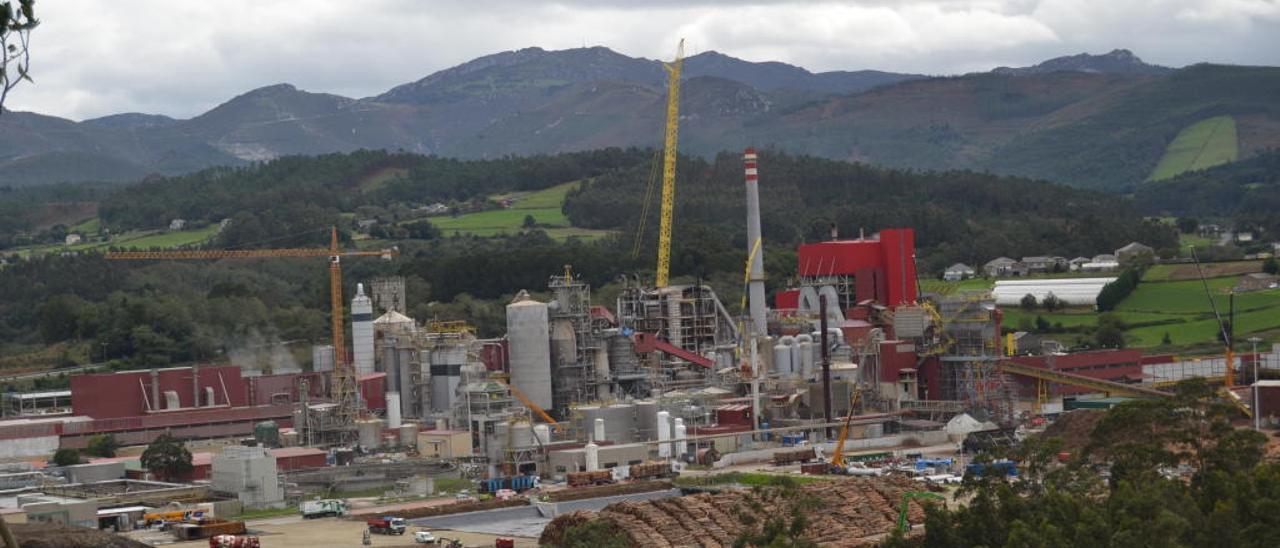 La planta de Ence en Navia // Ana Serrano